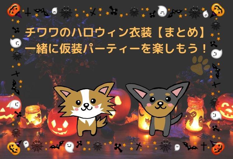 チワワのハロウィン衣装【まとめ】一緒に仮装パーティーを楽しもう!