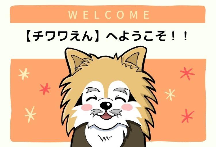 チワワえんへようこそ!