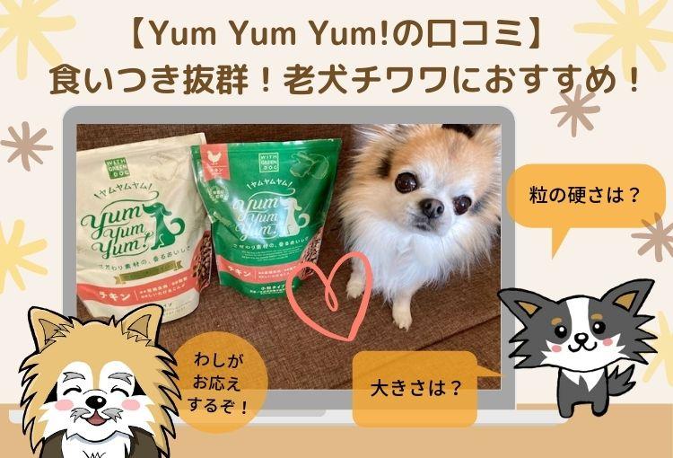 Yum Yum Yum!(ヤムヤムヤム)お試しセットの口コミ!シニア犬チワワにおすすめの人気ドッグフード